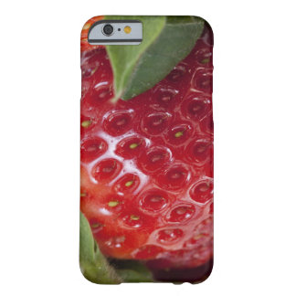 Full frame close-up of a Strawberry Barely There iPhone 6 Case