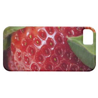 Full frame close-up of a Strawberry iPhone 5 Cases