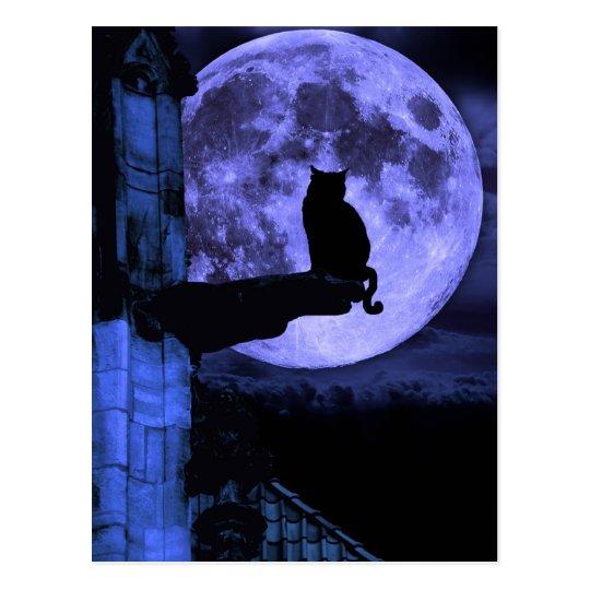 Full Moon Cat Postcard