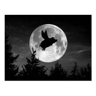 full moon flying pig postcard