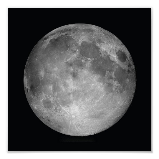 Full Moon Poster Print Zazzle Co Uk