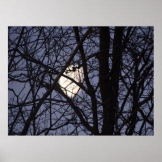 Full Moon scene Poster