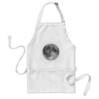 Full moon seen with telescope standard apron
