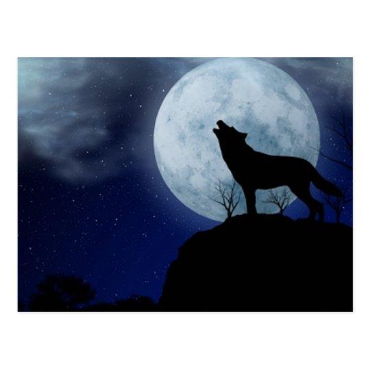 Full Moon Wolf Postcard