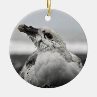 Fulmar Ornament