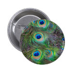 Fun and Cool peacock feather design Buttons