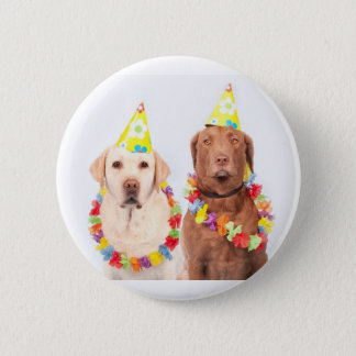 fun and humor m, buttons, for sale ! 6 cm round badge