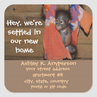 Fun Baby Orangutan Change of Address  Labels