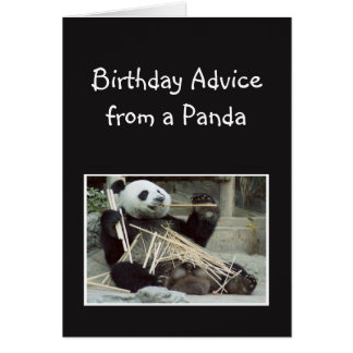 Fun Birthday Advice from Panda Bear Animal Humor Card