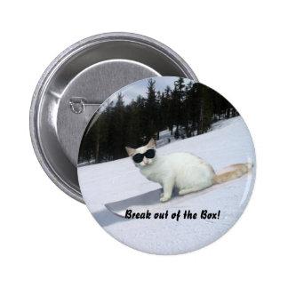 Fun Break out of the Box Cat button