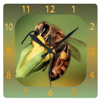 Fun Close-up Bee Pollen Basket On Yellow Flower Clocks