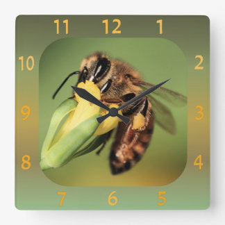 Fun Close-up Bee Pollen Basket On Yellow Flower Square Wall Clock