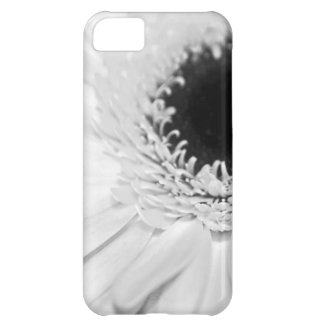 Fun Entertainment Gatherings Wedding Parties Case For iPhone 5C