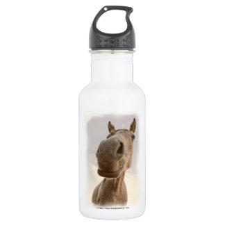 Fun Friendly Horse Aluminum 18oz Water Bottle