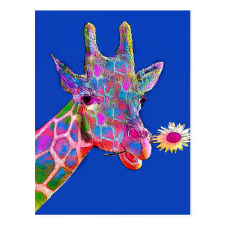 Fun Giraffe Sunflower Colors Postcard