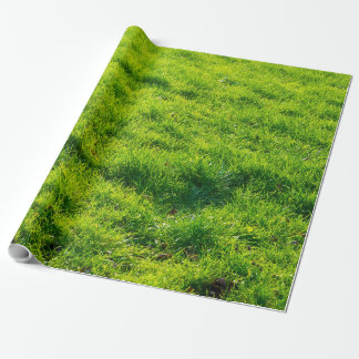 Fun Green Grass Print Wrapping Paper