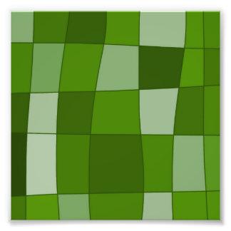 Fun Mirror Checks in Green Photographic Print