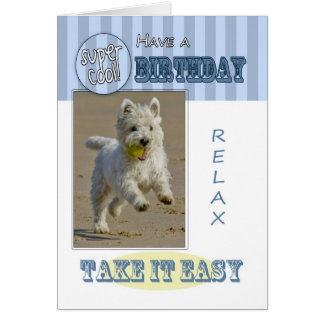 Fun Modern West Highland White Terrier Dog Card