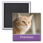Fun Purple Personalised Pet Photo Magnet