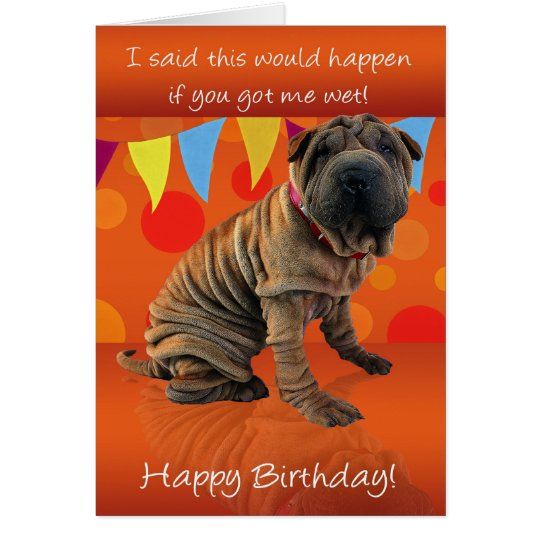 Fun Shar Pei Birthday Card With Birthday Humour