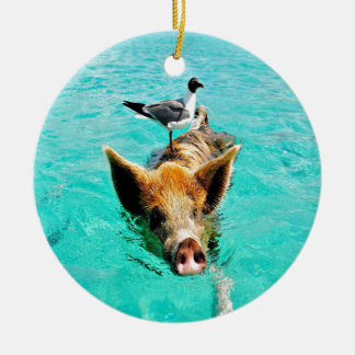 Fun together  staniel cay swimming pig seagull fis christmas ornament