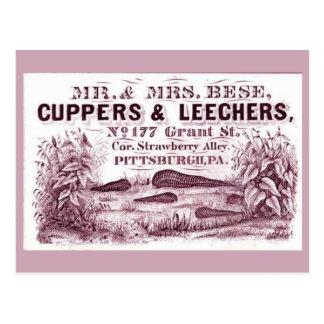 FUN Vintage MEDICAL  Leeches Ad CUPPERS & LEECHERS Postcard