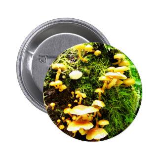 Fungal 6 Cm Round Badge