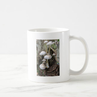 Fungi on tree coffee mug