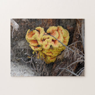 Fungus Heart Puzzle