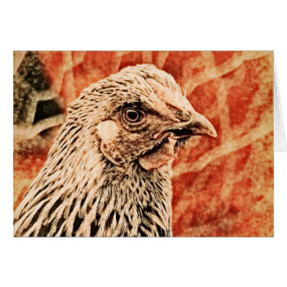 Funky Baby Chicken Silver Laced Wyandotte Pullet Greeting Card