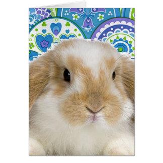 Funky Bunny Card