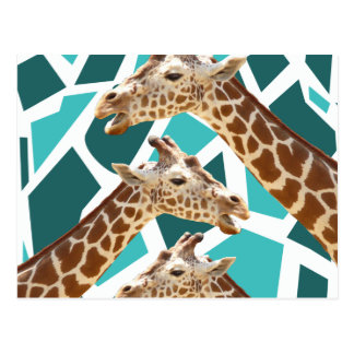 Funky Giraffe Print Teal Blue Wild Animal Pattern Postcard