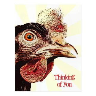 Funky Grumpy Chicken Superstar Postcard
