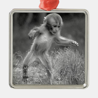 Funky Little Monkey Silver-Colored Square Decoration