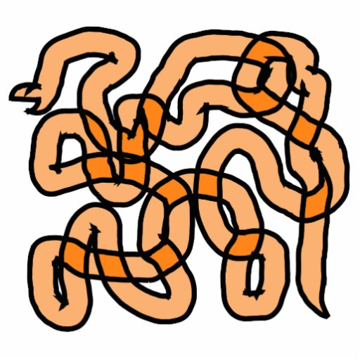 Funky Orange Snake Design. Photo Cutout