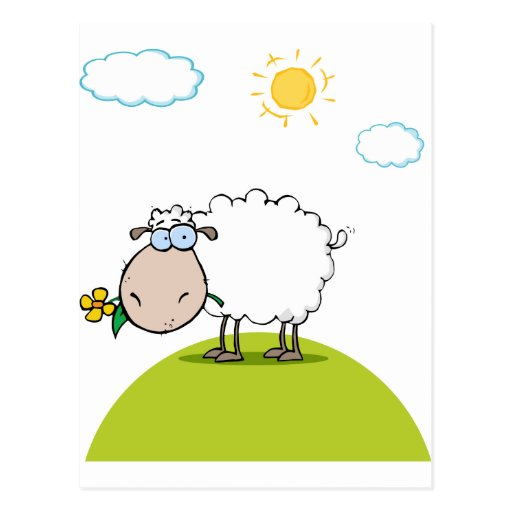 Funky Sheep With Flower In Mouth Post Cards