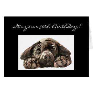 Funny 50th Birthday, Labrador Retriever Card
