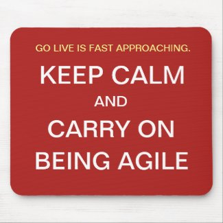 Funny Agile Project Manager Gift Keep Calm Joke