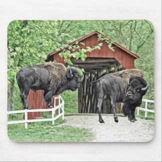 Funny American Bison At The Covered Bridge Mouse Mat