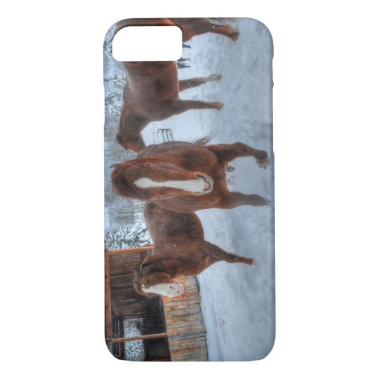 Funny Amorous Stallion and Reluctant Mare Horses iPhone