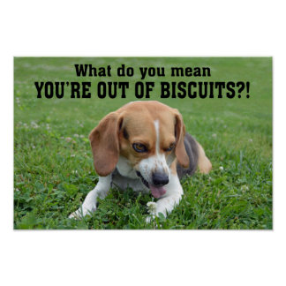 Funny Angry Beagle Out of Biscuits Poster