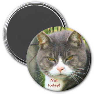 """Funny ANGRY CAT saying, """"NOT TODAY!"""" Magnet"""