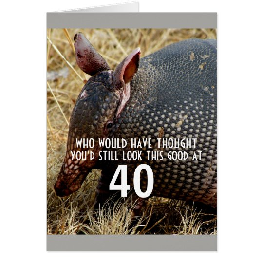funny armadillo custom birthday card humour