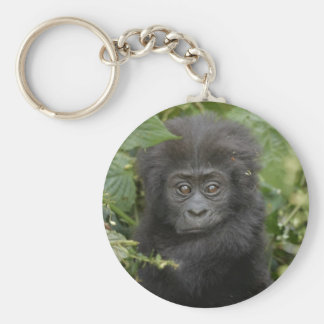 funny baby mountain gorilla, beringei beringei key chains