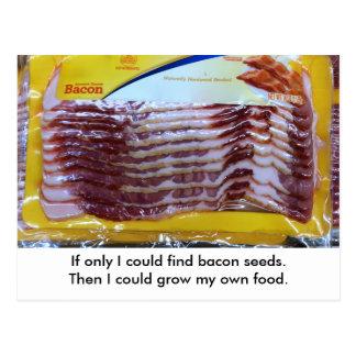 Funny Bacon Food Gardening Postcard.  Postcrossing Postcard