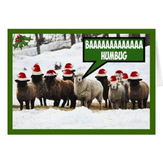 Funny Bah Humbug Greeting Card