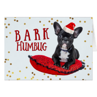 Funny BARK Humbug Cute Dog Lovers Christmas Greeting Card