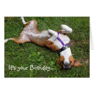 Funny Beagle Birthday Card