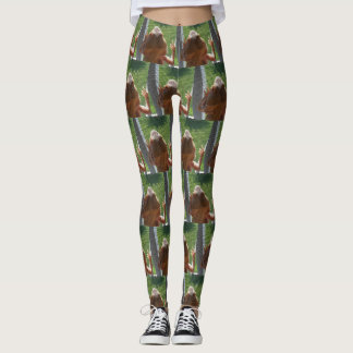 Funny Bearded Dragon Picture All Over Pattern Leggings