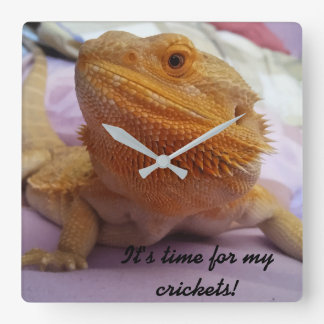 Funny Bearded Dragon Picture Design Square Wall Clock